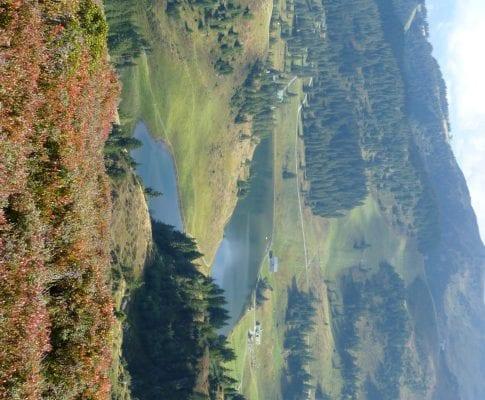 Protected: Herbstwanderungen
